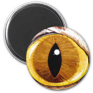 Painted Cat's Eye 2 Inch Round Magnet