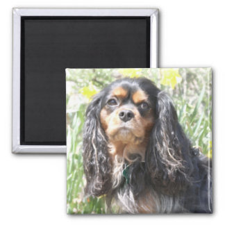 Painted Cavalier King Charles Spaniel 2 Inch Square Magnet