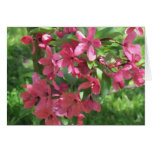 Painted Crabapple Blossoms customizable card