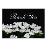 Painted Daisies Wedding Thank You Card