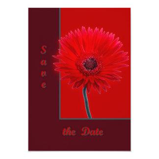 Painted Daisy Card