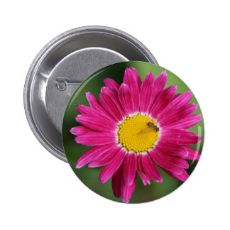 Painted Daisy Cards and more 2 Inch Round Button