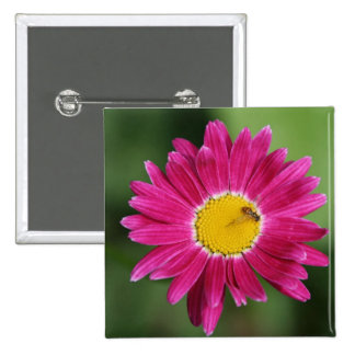 Painted Daisy Cards and more 2 Inch Square Button