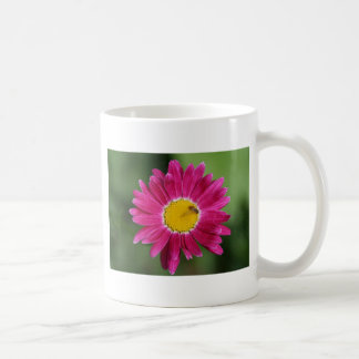 Painted Daisy Cards and more Classic White Coffee Mug