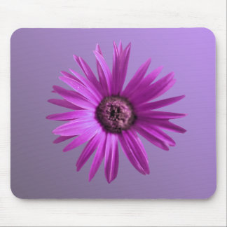 Painted Daisy Mouse Pad