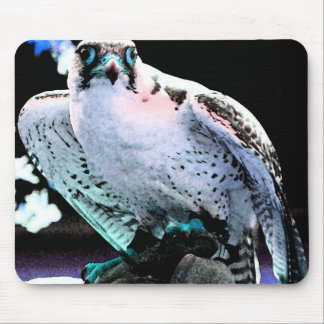 Painted Falcon Mouse Pad