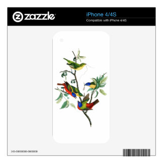 Painted Finch John James Audubon Birds of America iPhone 4S Decals