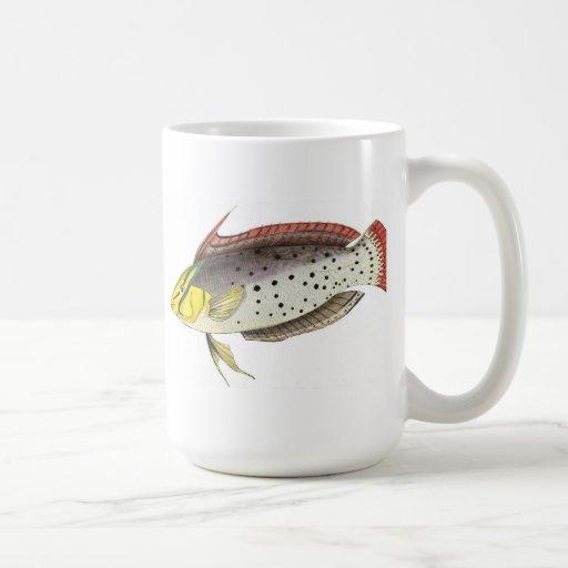 Painted Fish - Ceramic Mug