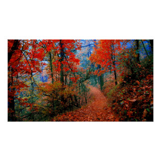 Painted Forest Autumn Flame Painted Photography Poster