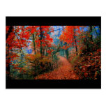 Painted Forest Autumn Flame Watercolor Gifts Postcard