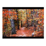Painted Forest Autumn Trail Watercolor Gifts Postcards