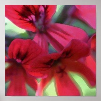 Painted Geranium print