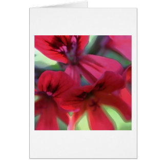 Painted Geraniums Card