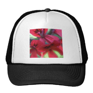 Painted Geraniums Trucker Hat