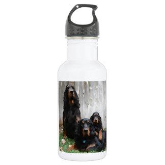 Painted Gordon Setter Generations Stainless Steel Water Bottle