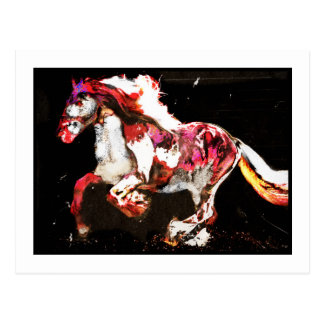 Painted Gypsy Horse Postcard
