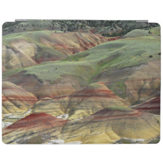 Painted Hills, John Day Fossil Beds, Mitchell iPad Smart Cover