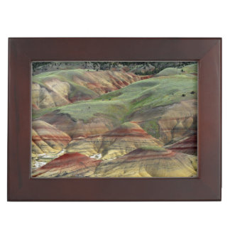Painted Hills, John Day Fossil Beds, Mitchell Memory Box