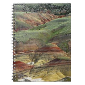 Painted Hills, John Day Fossil Beds, Mitchell Spiral Notebook