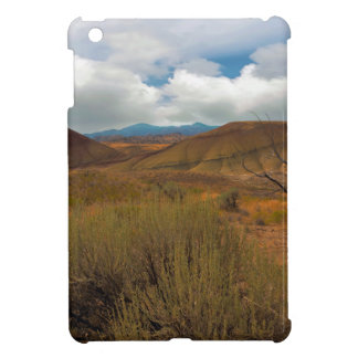 Painted Hills Landscape in Central Oregon iPad Mini Cases