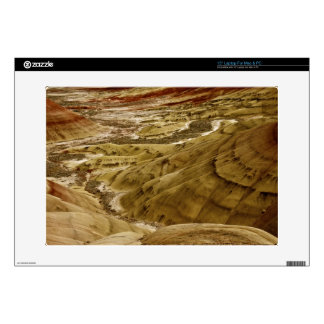 "PAINTED HILLS OF OREGON DETAIL 15"" LAPTOP SKINS"