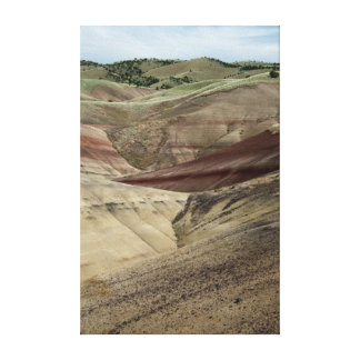 Painted Hills Wrapped Canvas Print