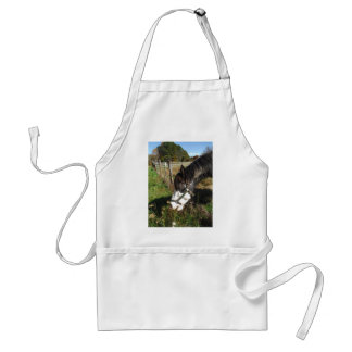 Painted Horse, Eating Queen Ann Lace flower Adult Apron