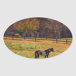 Painted Horse in the Distance Oval Sticker