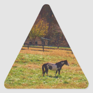 Painted Horse in the Distance Triangle Sticker
