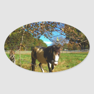 Painted Horse, Oval Sticker