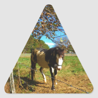 Painted Horse, Triangle Sticker