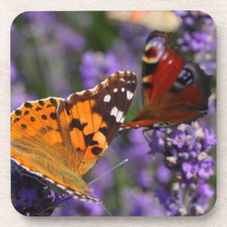 painted lady and peacock butterfly coaster