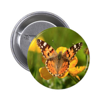 Painted Lady Butterfly Pins