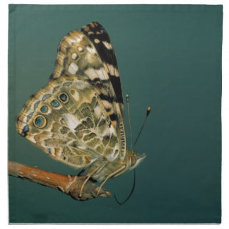 Painted Lady Butterfly Close-up Napkin