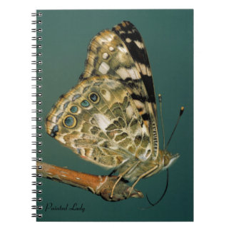 Painted Lady Butterfly Close-up Spiral Notebook