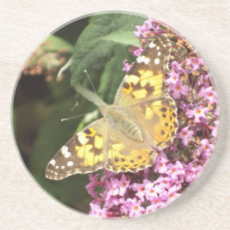 Painted Lady Butterfly Drink Coaster