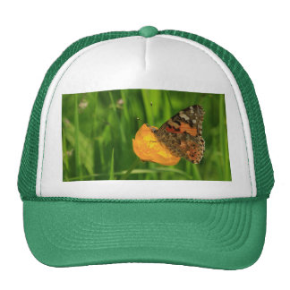 Painted Lady Butterfly Mesh Hat