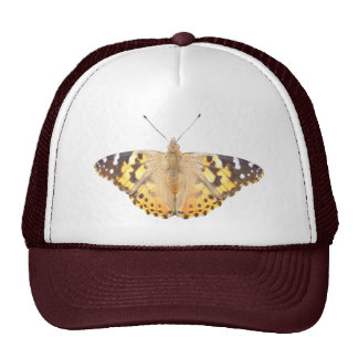 Painted Lady Butterfly ~ hat