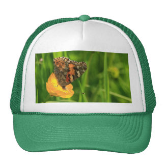 Painted Lady Butterfly Hat