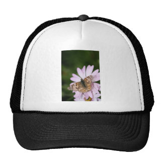 Painted Lady Butterfly on Pink Flower Trucker Hat
