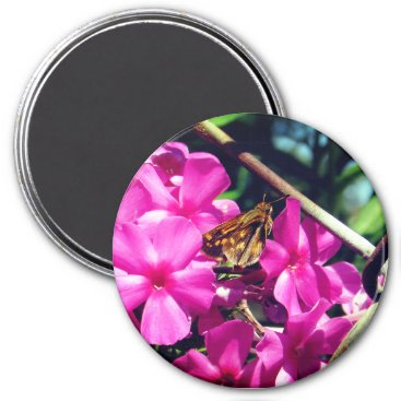 Beach Themed Painted Lady Butterfly on Pink Flowers Magnet