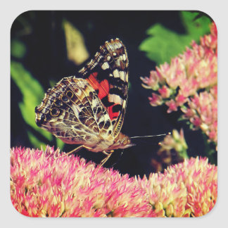 Painted Lady Butterfly on Pink Flowers Square Sticker