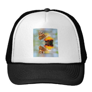 Painted lady butterfly with reflection trucker hat