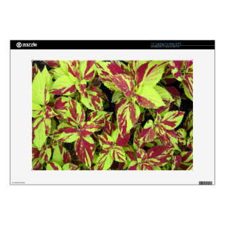 Painted Lady Coleus 15 Inch Laptop Skin