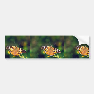 Painted lady on Goldenrod Car Bumper Sticker