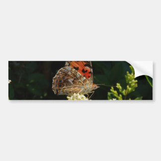 painted lady on the hedge car bumper sticker