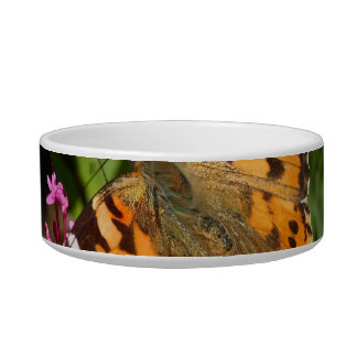 painted lady on wild flower cat water bowl