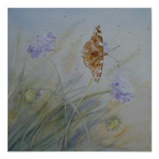 Painted Lady on Wild Flowers Poster