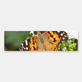 painted lady over the hedge car bumper sticker