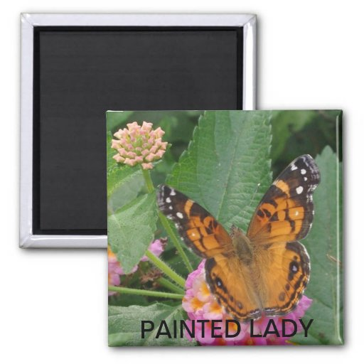 PAINTED LADY REFRIGERATOR MAGNET
